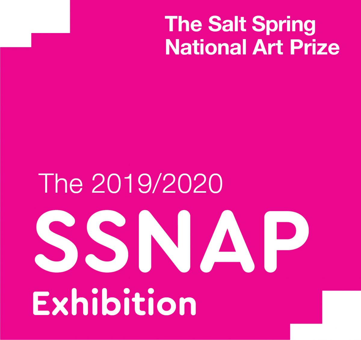 SSNAP is back! Call for submissions open January 10, 2019